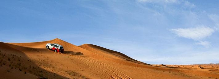 Enjoy dune driving in the serene Dubai Desert Conservation Reserve