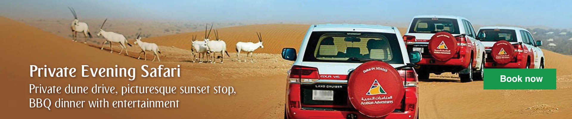Evening Safari in Dubai Private Vehicle