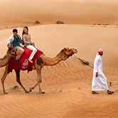 Morning Desert Safari in Dubai Private Vehicle, , small