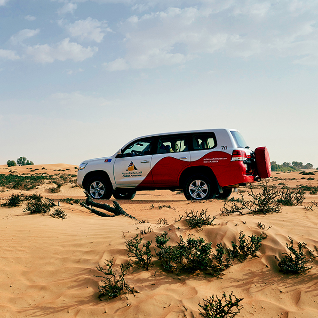 Overnight Safari in Dubai - Pick-up, , large