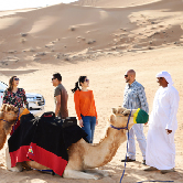 Morning Desert Safaris in Dubai - Shared Vehicle, , small